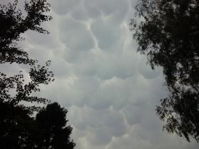 Das Bild zeigt eine Wolkendecke, die wie runde Wattestücke aussieht