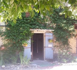 Das BIld zeigt eine offene Tür zu einem bewachsenen Steinhaus