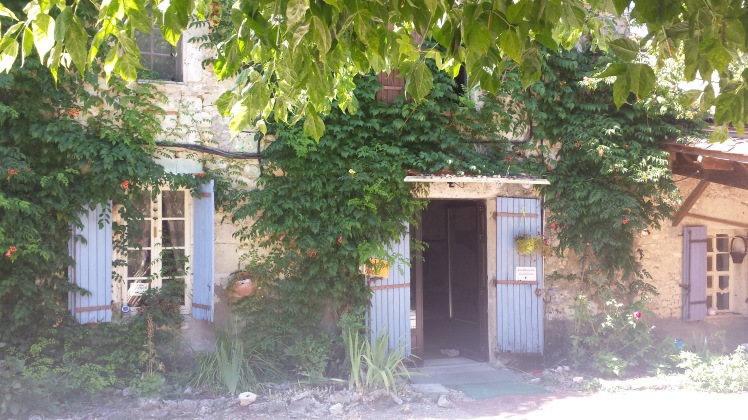 Das Bild zeigt ein altes Steinhaus mit einer offenen Türe. Es ist von Kletterpflanzen bewachsen
