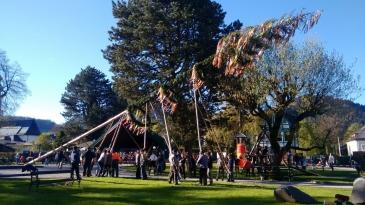 Bild zeigt eine Gruppe von Menschen, die einen Maibaum aufstellen